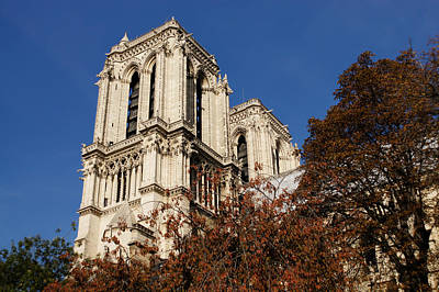 Photograph - Notre-dame De Paris - French Gothic Elegance In The Heart Of Paris France by Georgia Mizuleva