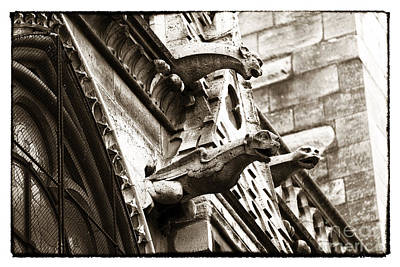 Photograph - Notre Dame Protection by John Rizzuto
