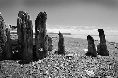 Photograph - Nova Scotia by Randi Grace Nilsberg
