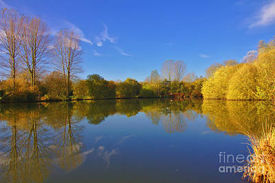 Photograph - November Lake 1 by Jeremy Hayden