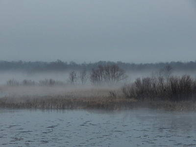 Photograph - November Mist by Wild Thing