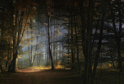 Autumn Leaf Photograph - November Morning by Norbert Maier