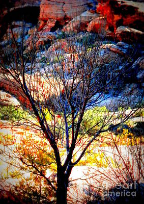 Photograph - November Mountain Tree by L Cecka
