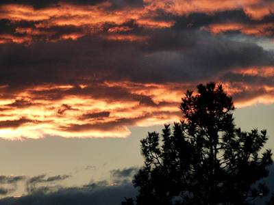Photograph - November Sunset by Will Borden