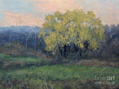 Painting - November Willow by Gregory Arnett