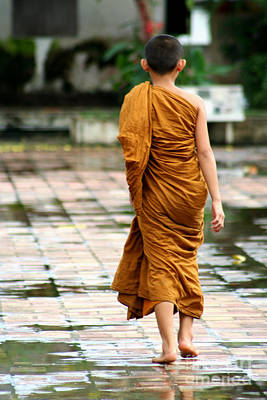 1-war Is Hell Royalty Free Images - Novice Monk of Chedi Luang Royalty-Free Image by Nola Lee Kelsey