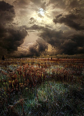 Fall Leaves Photograph - Nowhere Land by Phil Koch