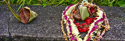 Photograph - Nua Pali Offerings by Brian Gibson