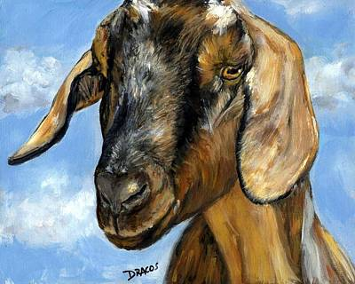 Nubian Goat Portrait Art Print by Dottie Dracos
