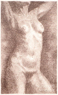 Drawing - Nude Female Torso Drawings 2  by Gordon Punt