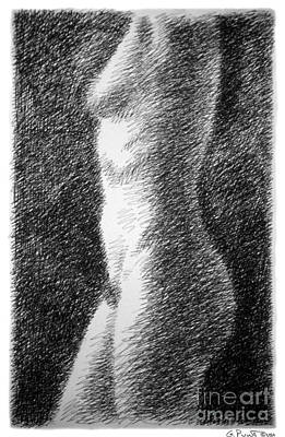 Drawing - Nude Female Torso Drawings 6 by Gordon Punt