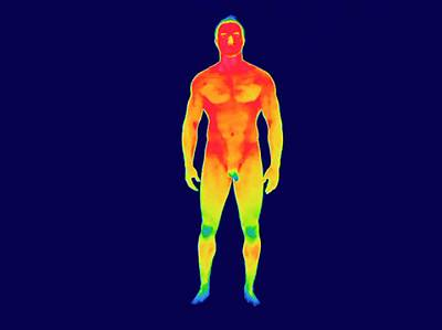 Thermogram Photograph - Nude Man by Thierry Berrod, Mona Lisa Production