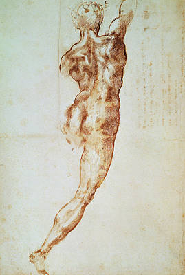 Nude, Study For The Battle Of Cascina Print by Michelangelo Buonarroti