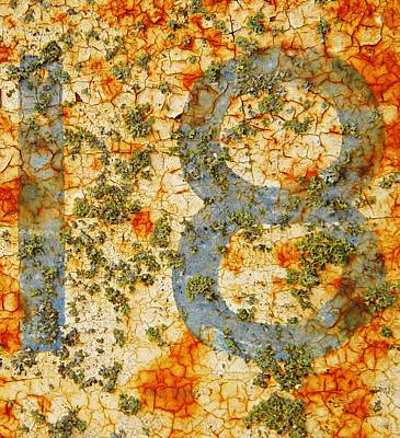 Photograph - Number 18 With Lichens by Chris Berry