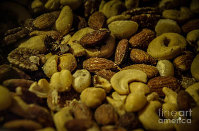 Photograph - Nuts by Ronald Grogan