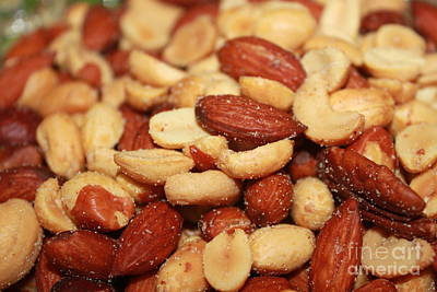 Photograph - Nuts by Terri Thompson