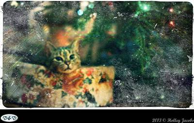 Digital Art - Nuttin For Christmas by Holley Jacobs