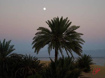 Nuweiba Beach Sinai Egypt Art Print by Colette V Hera  Guggenheim