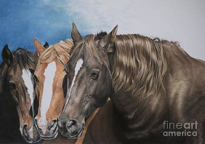 Red Dun Horse Pastel - Nuzzle To Nuzzle by Joni Beinborn