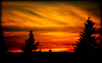Digital Art - Nw Sunset I by Kathy Sampson