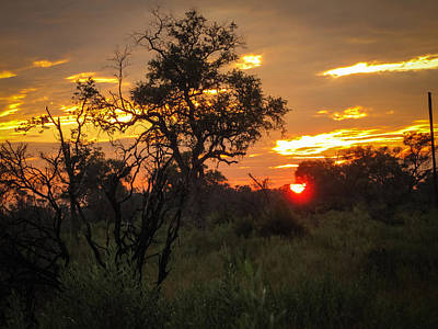 Photograph - Nxabega Sunset 1 by Gregory Daley  PPSA