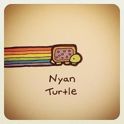 Reptiles Wall Art - Photograph - Nyan Turtle #turtleadayjuly by Turtle Wayne