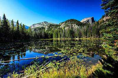 Photograph - Nymph Lake by Ben Graham