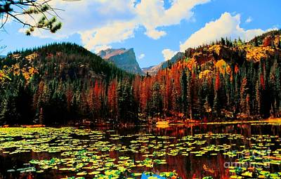 Kathleen Lake Photograph - Nymph Lake by Kathleen Struckle