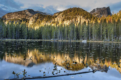 Photograph - Nymph Lake Sunrise 2 by Lee Kirchhevel
