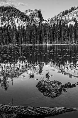 Photograph - Nymph Lake Sunrise Black And White by Lee Kirchhevel