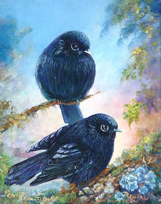 Nz Black Robins Art Print by Peter Jean Caley