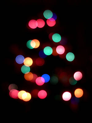 Photograph - O Bokeh Tree by Richard Reeve
