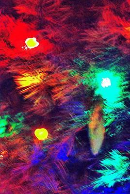 Photograph - O Christmas Tree by Bob Wall