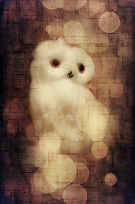 Greetingcard Photograph - O Owly Night by Loriental Photography