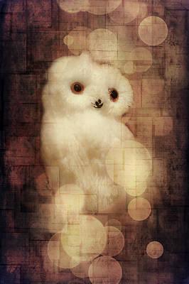 O Owly Night Art Print by Loriental Photography