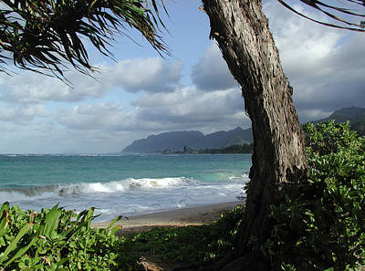 Painting - Oahu Coastline by John Norman Stewart