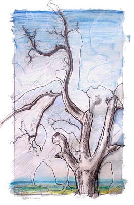 Oak 1 Art Print by Dayton Claudio