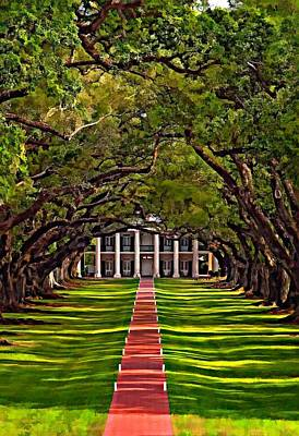 Oak Alley II Art Print by Steve Harrington