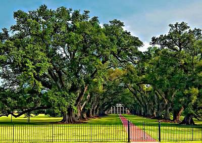 Mansion Digital Art - Oak Alley Plantation 2 by Steve Harrington