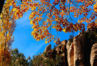 Jerry Sodorff Royalty-Free and Rights-Managed Images - Oak Creek 23670 by Jerry Sodorff