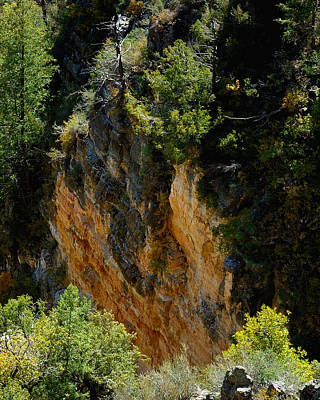 Jerry Sodorff Royalty-Free and Rights-Managed Images - Oak Creek Canyon Color 23614 by Jerry Sodorff