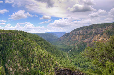 Oak Creek Canyon Photograph - Oak Creek Canyon by Ricky Barnard