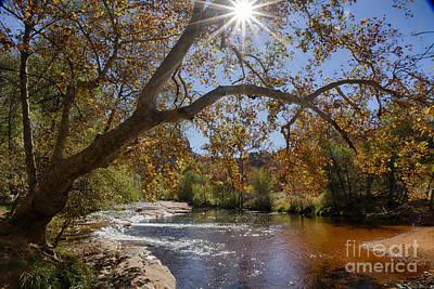 Photograph - Oak Creek by Idaho Scenic Images Linda Lantzy