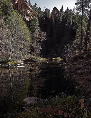 Oak Creek Shadows Art Print