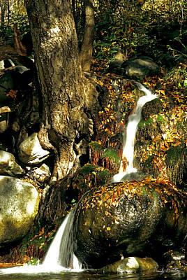Oak Creek Photograph - Oak Creek Waterfall by Randy Bradley