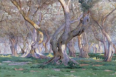 Oak Grove Art Print by Gunnar Widforss