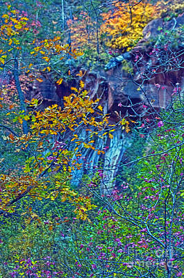 Oak Leaves By The Canyon Wall Original