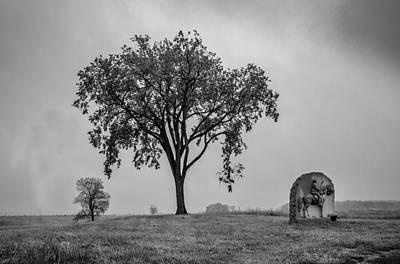 Photograph - Oak Ridge 2698 by Guy Whiteley