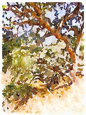 Digital Art - Oak by Shannon Grissom