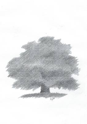 Painting - Oak Tree Drawing Number Five by Alan Daysh